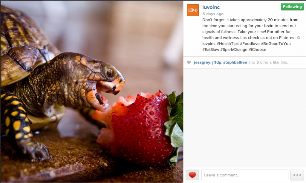 An example of copy for Instagram.